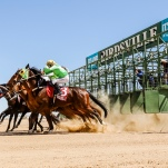 Birdsville Cup day. Birdsville Races 2018 © Photo by Salty Dingo 2018