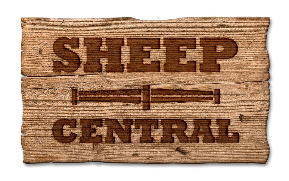 Sheep-Central-Logo-Timber-clean